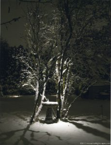 Snowy Birdbath lit by Innovative Nightscapes